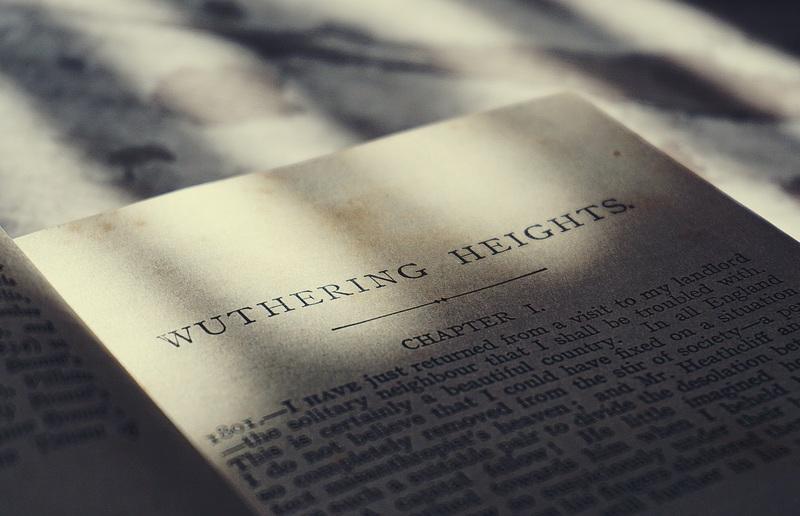 Penjelasan Pengertian Puisi dan Struktur Fisik Didalamnya